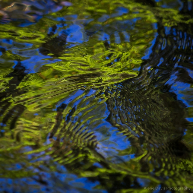 Brilliant leaf greens and sky blues create abstract patterns on the undulating water.